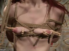 Redhead sex slave Niki Fox is trapped for fetish